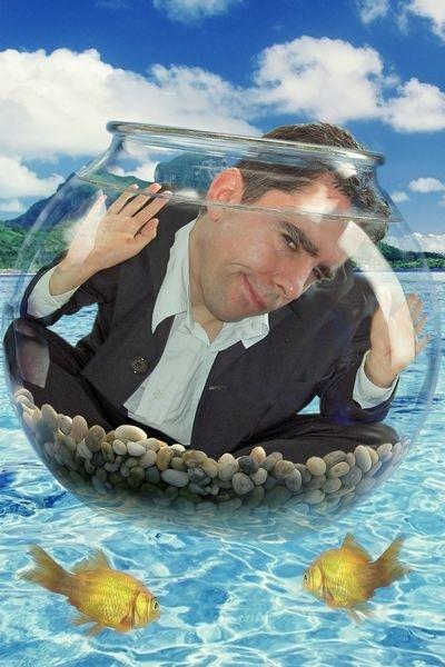 Шаблон юмористический аквариум