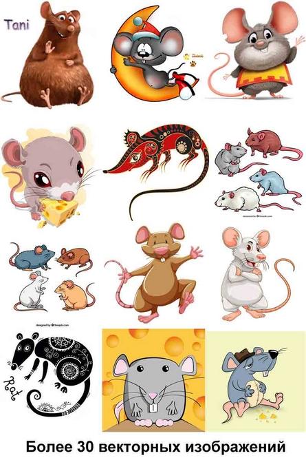 Крыса, векторный клипарт, скачать