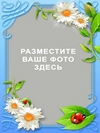 Летняя рамочка с ромашками (PSD)